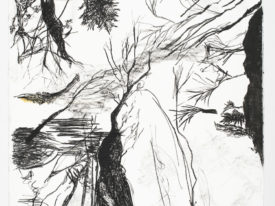 Places of sense – Flying trees